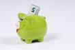 Sparschwein mit 5 Euro Schein