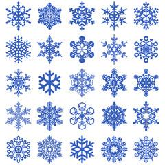 Sammlung mit 25 Schneeflocken – Vektor und freigestellt