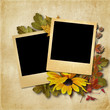 vintage background with photo-frame and autumn leaves
