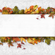Autumn banner with leaves on a textural background