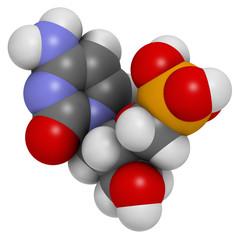 Cidofovir cytomegalovirus (CMV, HCMV) drug, chemical structure.