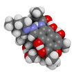rifampicin (rifampin, rifamycin class) tuberculosis antibiotic