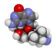 Valganciclovir cytomegalovirus (CMV, HCMV) drug
