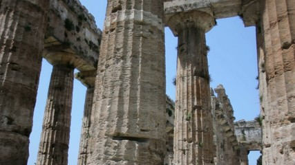 Pillars of an Ancient Greek Temple