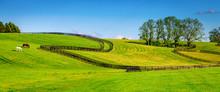 """Постер, картина, фотообои """"Horse farm fences"""""""