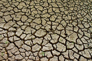 Dried earth because of rain dose not fall