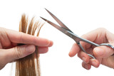 Fototapety hands of hairdresser cutting woman's  hair