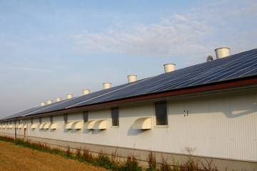 solar auf stallgebäude