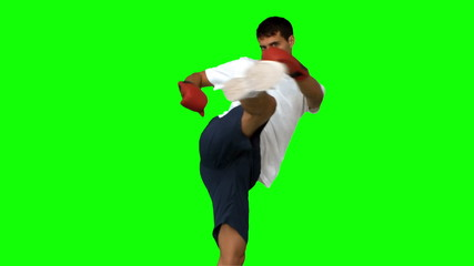 Boxer performing an air kick on green screen