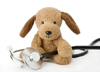 Pediatrics. Puppy toy with medical equipment