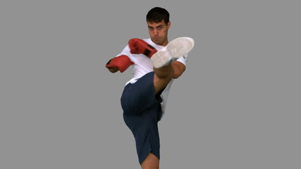 Boxer performing an air kick on grey screen