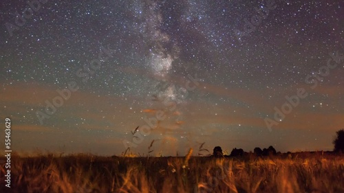Milky Way over a wheat field