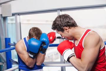 Two men boxing. Two boxers fighting on the boxing ring