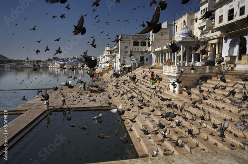 India, Pushkar, view of the town and the sacred lake