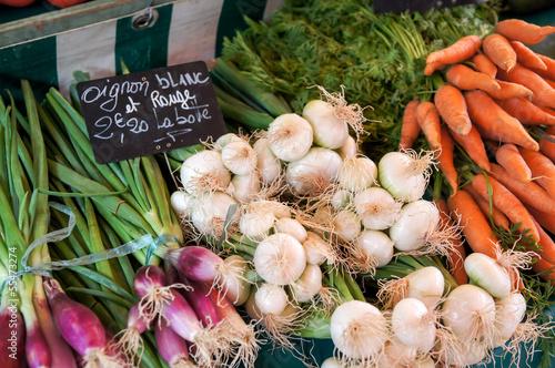 Keuken foto achterwand Boodschappen au marché : oignons blanc et rouges