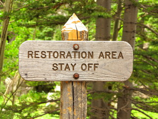 Restoration area stay off sign in forest