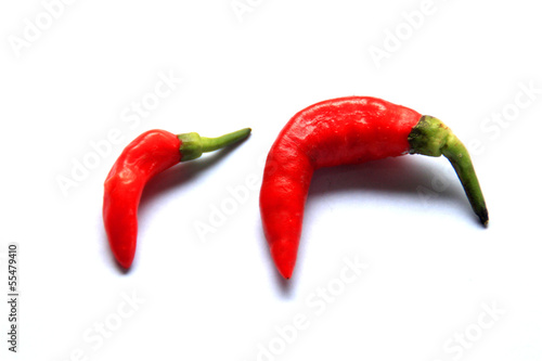 Red Curvy Chilli Small Big