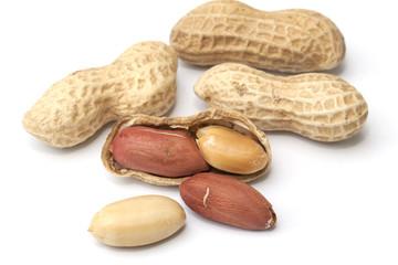 Peanut isolated on the white background