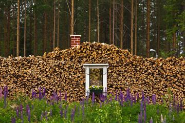 Das Fenster im Holz 4