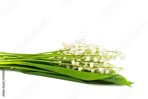 bouquet of lilies of the valley isolated