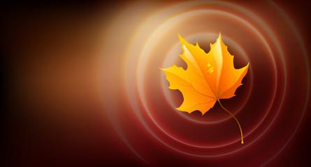 Autumn leaf background, Illustration.