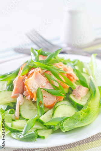 salad with salmon and cucumber