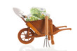 Wheelbarrow with Euro banknotes