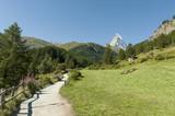 Zermatt,  Wanderweg zum Furi, Zmutt, Matterhorn poster