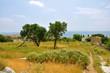 urige landschaft auf samos, griechenland