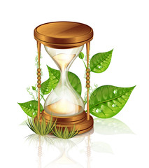 Hourglass And Plants