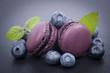 Macarons, Heidelbeere