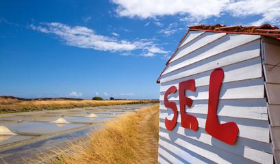 France > Vendée > Noirmoutier > Marais > Sel