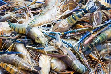 pile of prawns