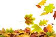 Herbst 69