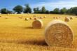 Leinwanddruck Bild - Hay bales in golden field