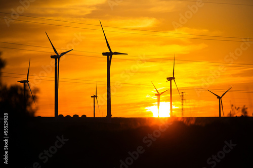 wind power sunset