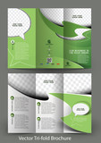 Tri-Fold Corporate Business Store Brochure Design