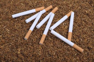 Tobacco (cigarette)