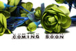 Coming soon with green flowers