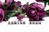 Coming soon with pink flowers
