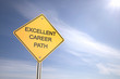 Excellent Career Path