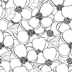 Abstract elegant seamless pattern with floral background.