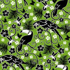 Fauna e flora brasileira