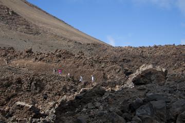 On the way to mountains, Teide, Tenerife