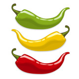 Chili peppers. Isolated vector