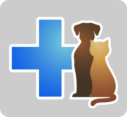 veterinary cross on grey background