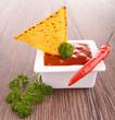 tortilla chip with salsa dip