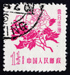 Postage stamp China 1958 Peony, Paeonia, Flowering Plant