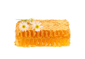 Honey in the comb with a sprig of camomile.