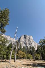 photo yosemite national park on a beautiful sunny day